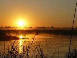Совсем скоро, уже 24 августа откроется охотничий сезон