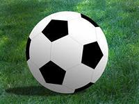Сегодня в Рубцовске впервые за последние 8 лет состоится финальный матч Кубка Алтайского края по футболу