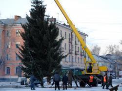 На главной площади Рубцовска установлена 17 метровая ель