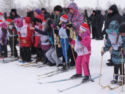 Почти 40 000 человек в Рубцовске занимаются физической культурой и спортом